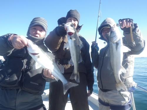 FISH0761