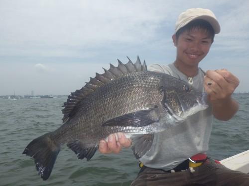 FISH1247